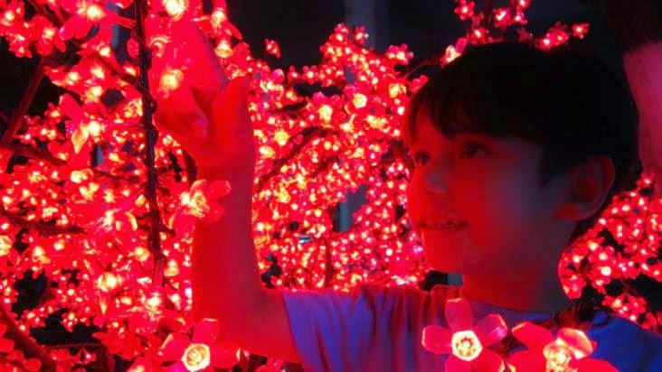 niño-navidad-luces