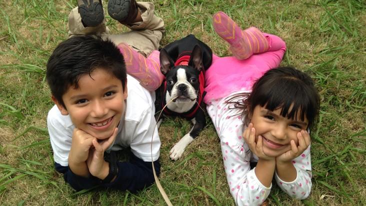 niños-mascota-perro-boston terrier