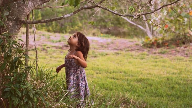 niña-bosque-naturaleza